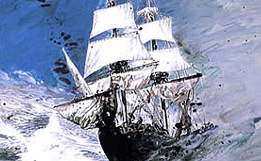 <span>土佐鶴酒造の米焼酎 海援隊</span>坂本龍馬が率いた海援隊のように新たな味に挑戦する本格焼酎。土佐の自然が育んだ爽快な味と香りをお試しください。